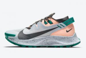 2021 Nike Pegasus Trail 2 Watermelon CK4309-004 Hot Sale