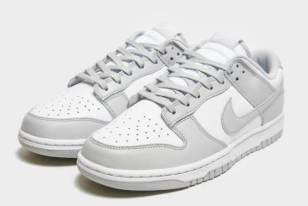Latest Nike Dunk Low Grey Fog White Grey Fog 2021 For Sale DD1391-103-2