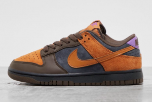 New Nike Dunk Low PRM Cider Off Noir/Cider-Dark Chocolate-Wild Berry 2021 For Sale DH0601-001