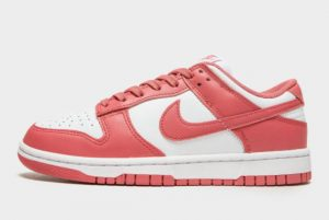 Cheap Nike Dunk Low Archeo Pink White Archeo Pink 2021 For Sale DD1503-111